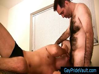 Hairy gay bear getting his cock sucked gaypridevault